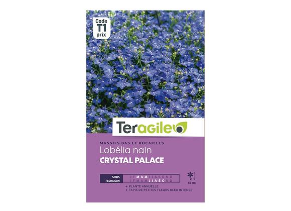 GRAINES LOBÉLIA NAIN CRYSTAL PALACE 0.20G TERAGILE®