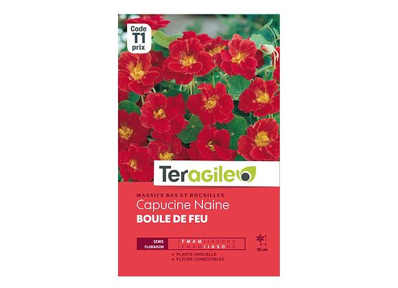 GRAINES CAPUCINE BOULE DE FEU 5G TERAGILE®