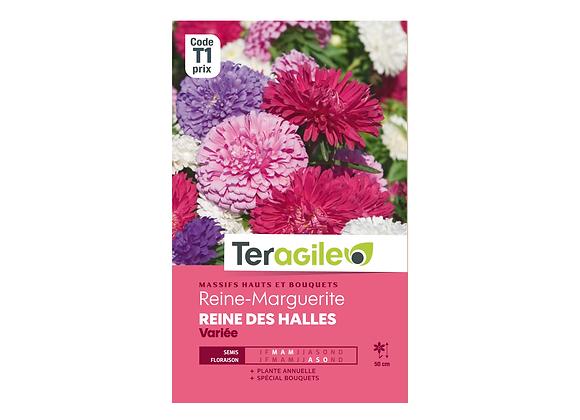 GRAINES REINE-MARGUERITE REINE DES HALLES VARIÉE 1G TERAGILE®