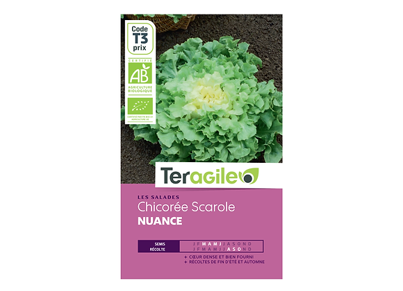 GRAINES CHICORÉE SCAROLE NUANCE BIO 2.5G TERAGILE®