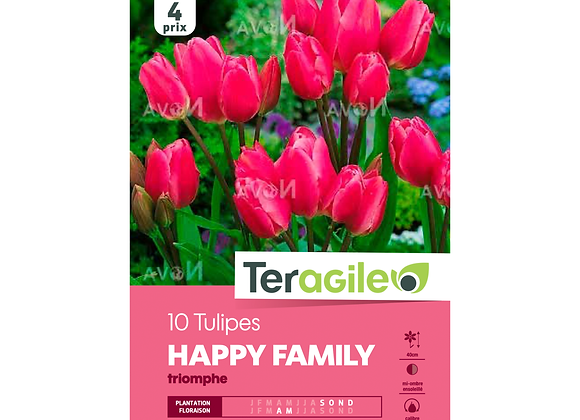 BULBES DE TULIPES 'HAPPY FAMILY' TRIOMPHE - TERAGILE® - X10