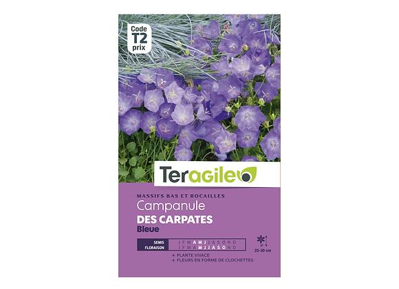 GRAINES CAMPANULE DES CARPATES BLEUE 1G TERAGILE®
