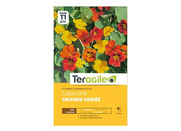 GRAINES CAPUCINE GRANDE VARIÉE 5G TERAGILE®