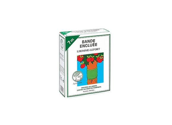 BANDE ENGLUEE 7M