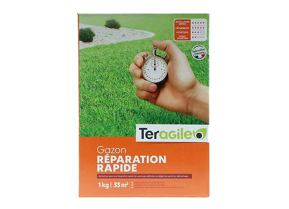 GAZON RÉPARATION RAPIDE TERAGILE® - 500g