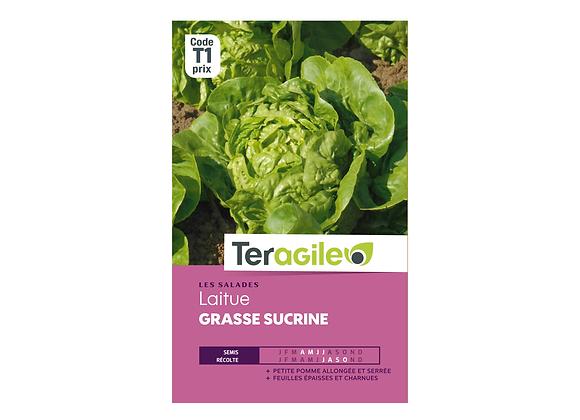 GRAINES LAITUE GRASSE SUCRINE 4G TERAGILE®