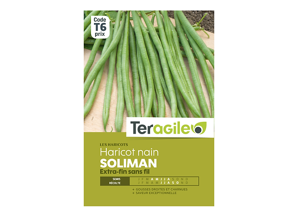 GRAINES HARICOT SOLIMAN 200G EXTRA FIN TERAGILE®