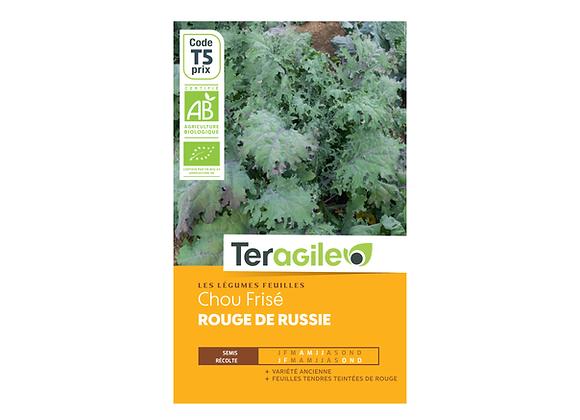GRAINES CHOU FRISÉ ROUGE DE RUSSIE BIO 2.3G TERAGILE®