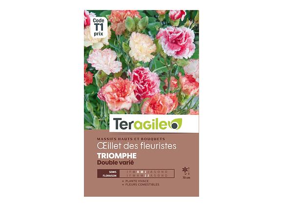 GRAINES OEILLET DES FLEURISTES TRIOMPHE DOUBLE VARIÉ 1G TERAGILE®