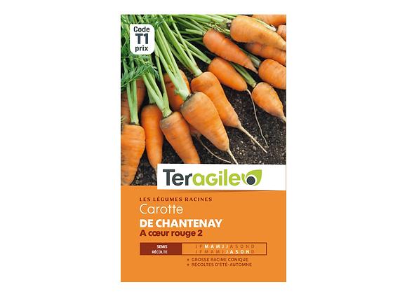 GRAINES CAROTTE DE CHANTENAY À COEUR ROUGE 2 6G TERAGILE®