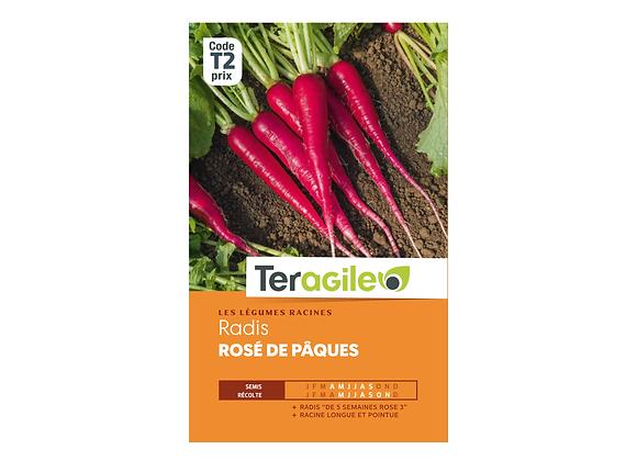 GRAINES RADIS ROSÉ DE PÂQUES 10G TERAGILE®
