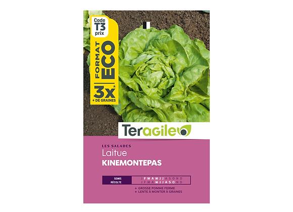 GRAINES LAITUE KINEMONTEPAS ECO 12G TERAGILE®