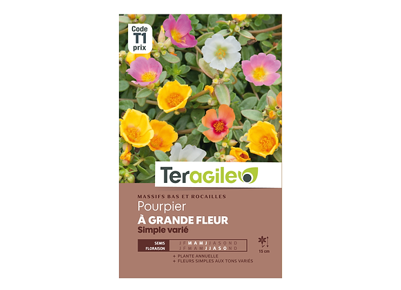 GRAINES POURPIER À GRANDE FLEUR SIMPLE VARIÉ 0.7G TERAGILE®