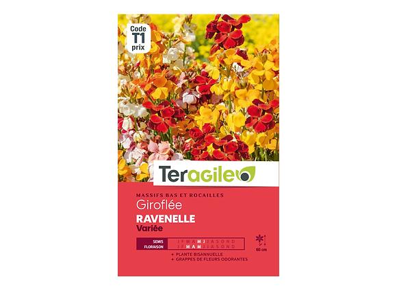 GRAINES GIROFLÉE RAVENELLE VARIÉE 2G TERAGILE®