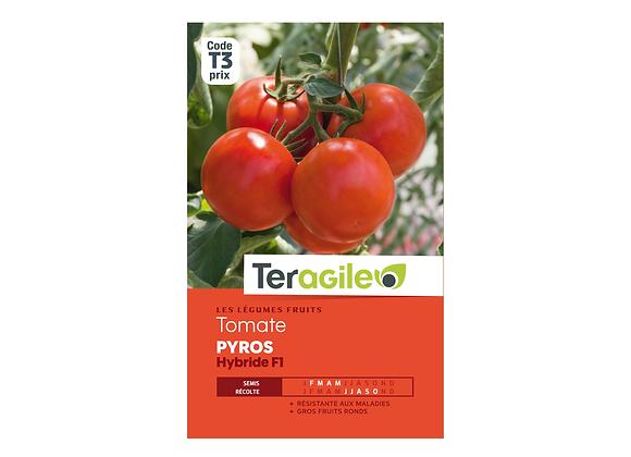 GRAINES TOMATE PYROS HYBRIDE F1 0.10G TERAGILE®