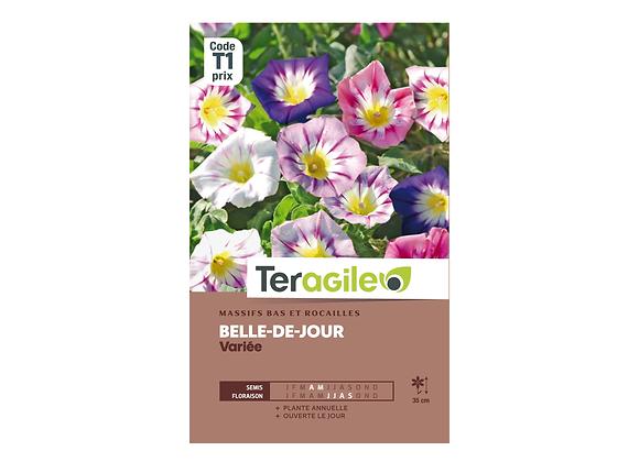 GRAINES BELLE DE JOUR VARIÉE 4G TERAGILE®