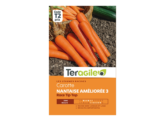 GRAINES CAROTTE NANTAISE AMÉLIORÉE 3 RACE TIP TOP 6G TERAGILE®