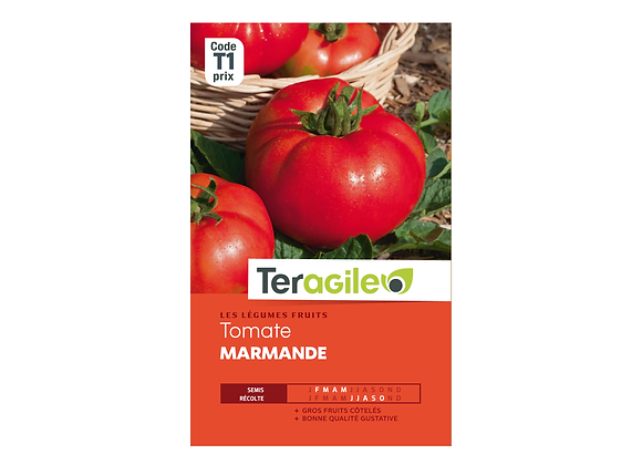 GRAINES TOMATE MARMANDE TERAGILE®