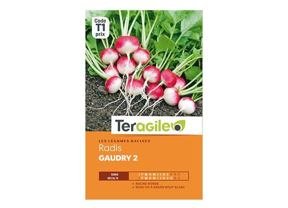 GRAINES RADIS GAUDRY 2 2G TERAGILE®