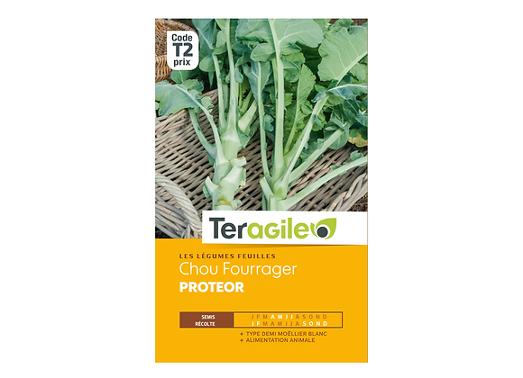 GRAINES CHOU FOURRAGER PROTEOR 10G TERAGILE®