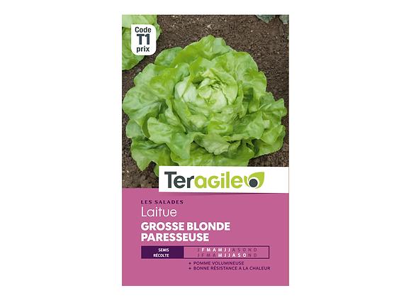 GRAINES LAITUE GROSSE BLONDE PARESSEUSE 4G TERAGILE®