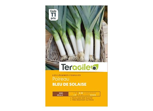 GRAINES POIREAU BLEU DE SOLAISE 4G TERAGILE®