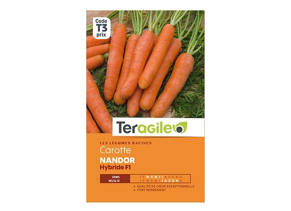 GRAINES CAROTTE NANDOR HYBRIDE F1 1.25G TERAGILE®