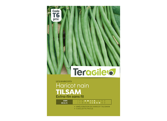 GRAINES HARICOT TILSAM NAIN 200G EXTRA FIN TERAGILE®