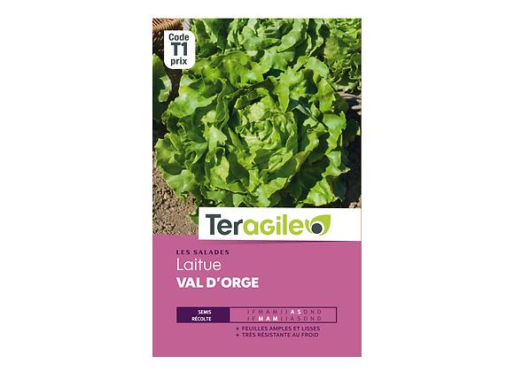 GRAINES LAITUE VAL D'ORGE 4G TERAGILE®