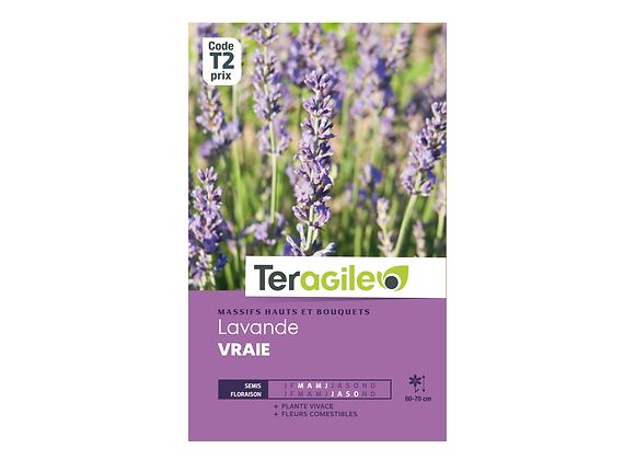 GRAINES LAVANDE VRAIE 1.5G TERAGILE®