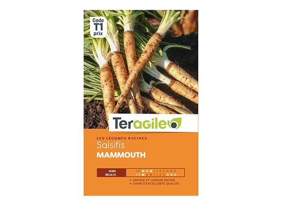 GRAINES SALSIFIS MAMMOUTH 4G TERAGILE®