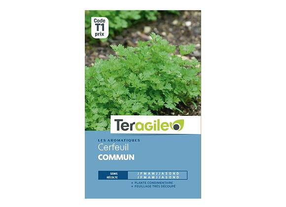 GRAINES CERFEUIL COMMUN 5G TERAGILE®