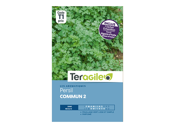 GRAINES PERSIL COMMUN 2 + ECHANTILLON PERSIL GÉANT D'ITALIE 5.5G TERAGILE®