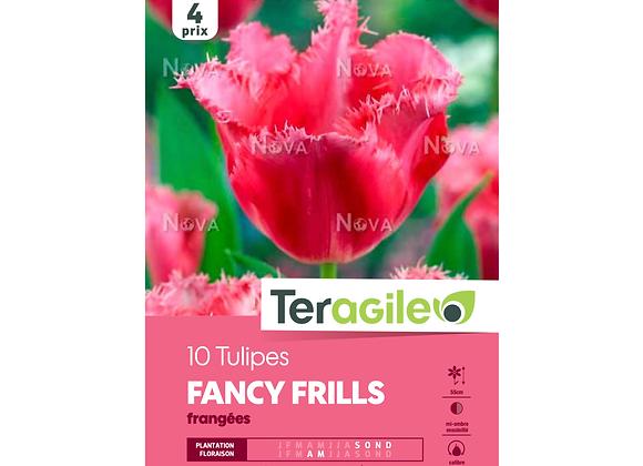 BULBES DE TULIPES 'FANCY FRILLS' FRANGÉES - TERAGILE® - X10