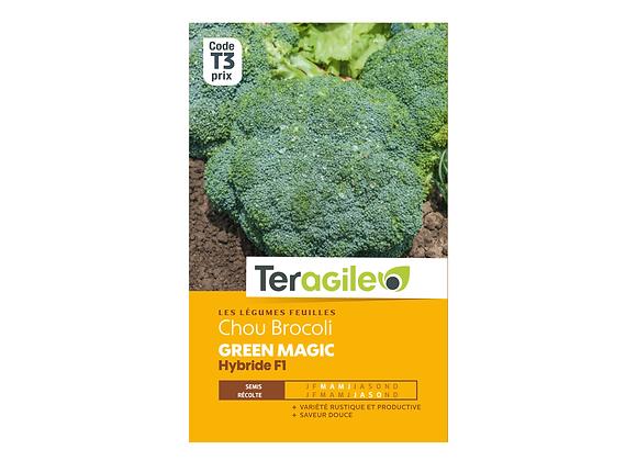 GRAINES CHOU BROCOLI GREEN MAGIC HYBRIDE F1 0.7G TERAGILE®