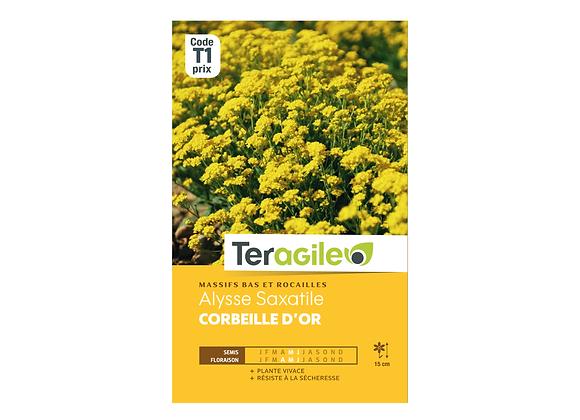 GRAINES ALYSSE SAXATILE CORBEILLE D'OR 1G TERAGILE®