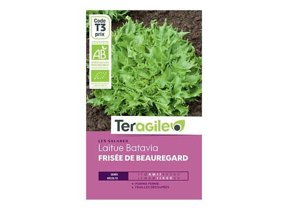GRAINES LAITUE BATAVIA FRISÉE DE BEAUREGARD BIO 2.5G TERAGILE®