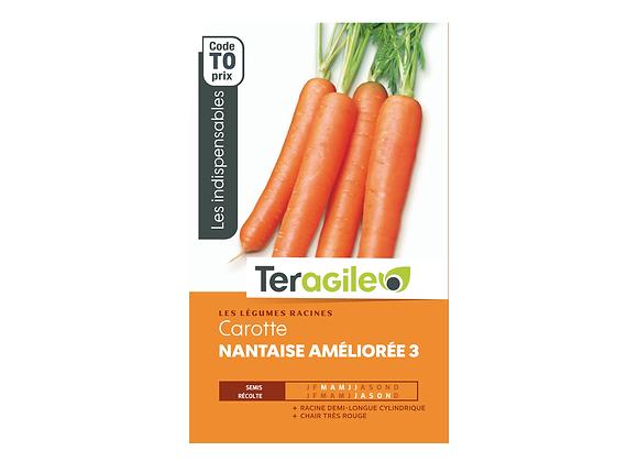 GRAINES CAROTTE NANTAISE AMÉLIORÉE 3 6G TERAGILE®