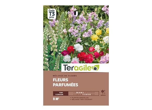 GRAINES FLEURS PARFUMÉES 15G TERAGILE®