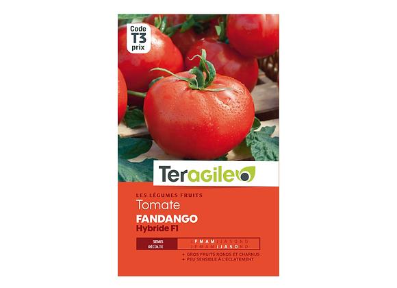 GRAINES TOMATE FANDANGO HYBRIDE F1 0.19G TERAGILE®