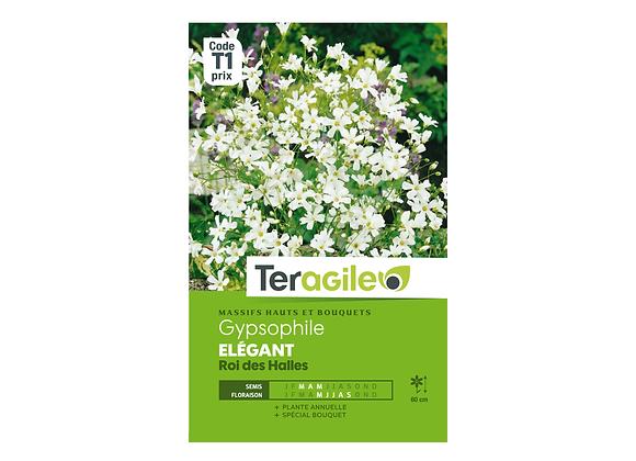 GRAINES GYPSOPHILE ÉLÉGANT ROI DES HALLES 1.5G TERAGILE®