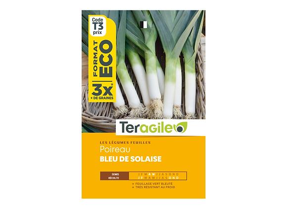 GRAINES POIREAU BLEU DE SOLAISE ECO 12G TERAGILE®