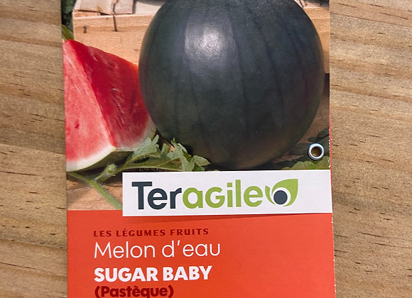 GRAINES MELON D'EAU (PASTEQUE) SUGAR BABy