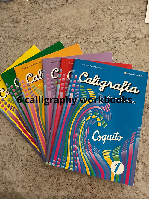 Calligraphy Workbooks for Advanced 1st Graders