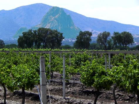 Valle de Bernal