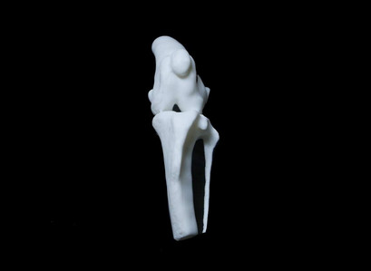 Impressão 3D de implante
