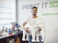 Impressão 3D de artes. Case elefantes da Amarula