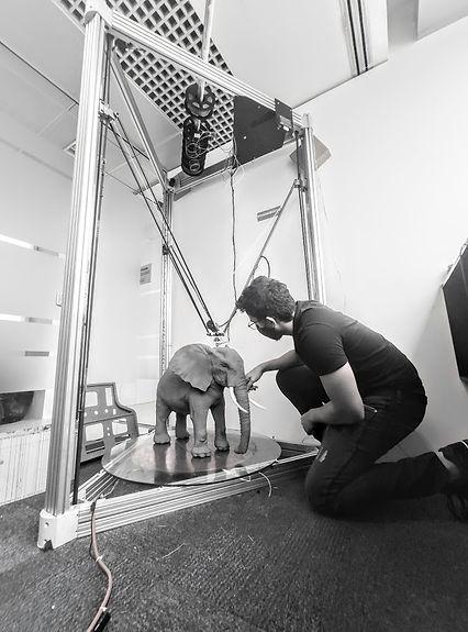 Elefante da Amarula sendo impressa 3D.jp