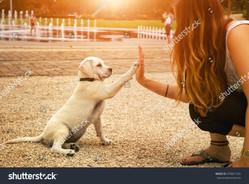 stock-photo-handshake-between-woman-and-