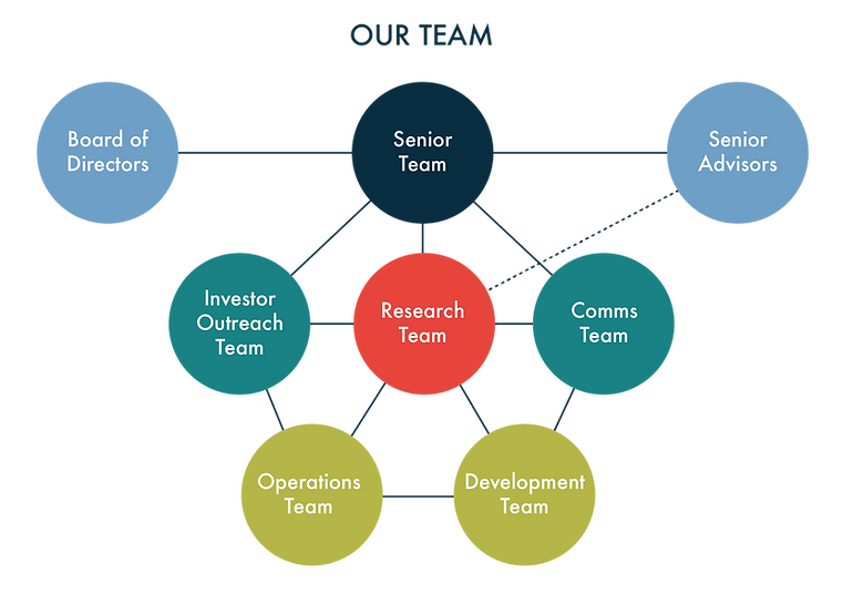 team structure_transp-01.png